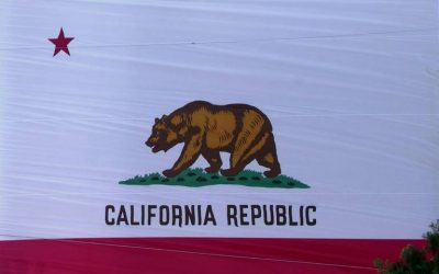 The Sacramento Bee: A former Democratic presidential candidate is suing California. He wants GOP votes to count